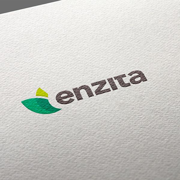 enzita logo white
